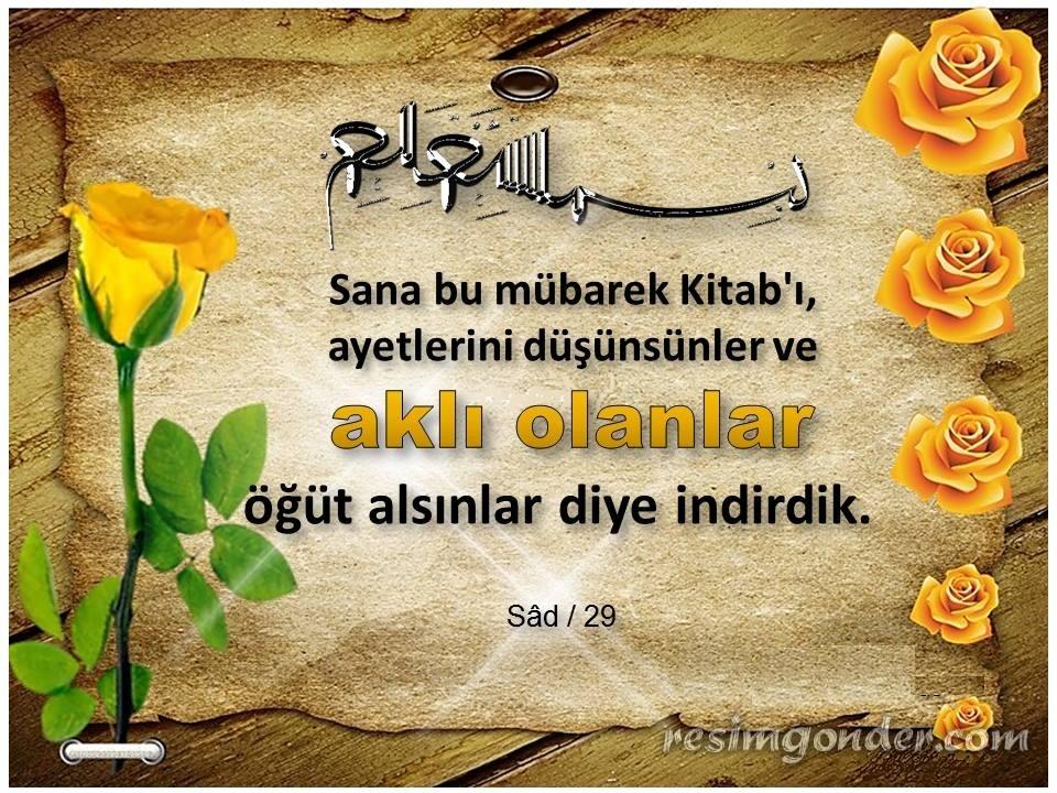 [Resim: sad-suresi-29.ayet_832fd57b0d31b997.jpg]
